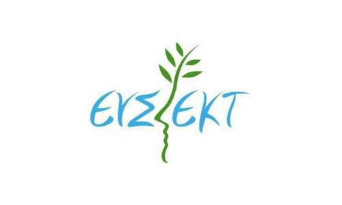 ΕΥΣΕΚΤ: Διαδικτυακά εργαστήρια στους τομείς Κοινωνικής Ένταξης και Απασχόλησης